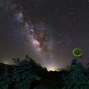 رصد-آسمان-کویر