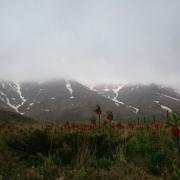 گلستانکوه-خوانسار