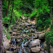 آب پری _آبشاری که آبشار نیست