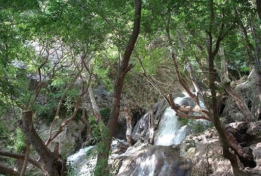 بهشت گمشده شیراز