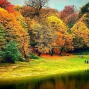 آشنایی با پارک جنگل النگدره | بهشت پاییزی گرگان