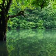دریاچه چورت (دریاچه میانشه)1