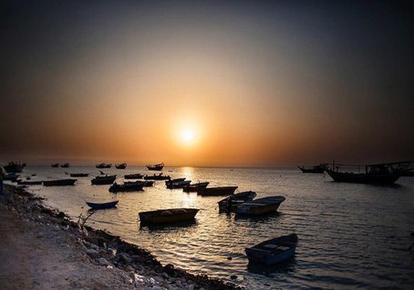 جزیره شیف بوشهر