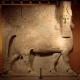 کاخ امپراطوری آشور در ویرانههای موصل کشف شد