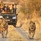 صنعت گردشگری آفریقا