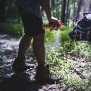چگونه در طبیعت حشرات را از خود دور نگه داریم؟