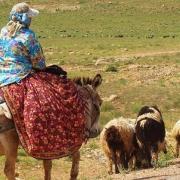 ظرفیتهای بومگردی و گردشگری عشایر استان فارس