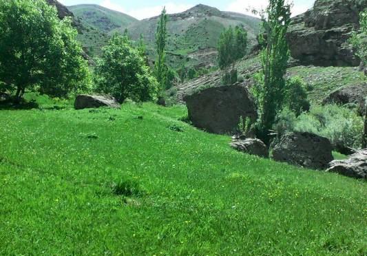 روستای علم كندی